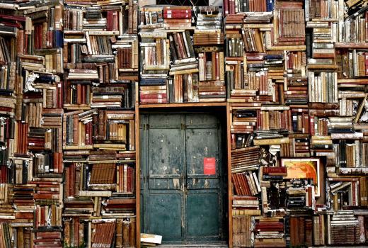 Književnost na društvenim mrežama