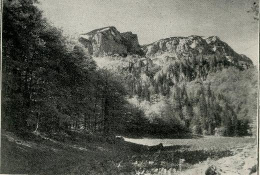 Infobiro: Treskavica planina